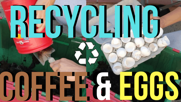 Recycling egg shells & coffee grounds